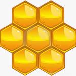 honeybee_honeycomb_PRF